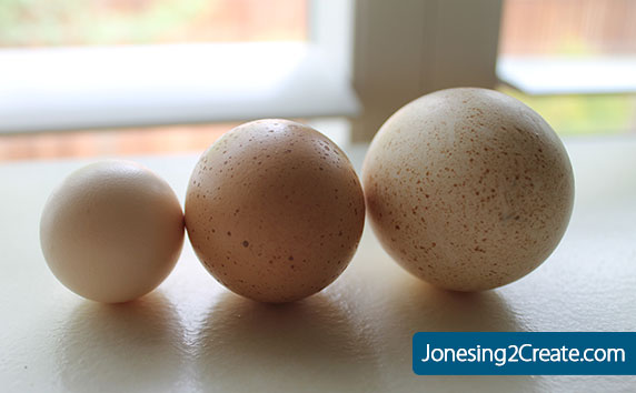 farm-fresh-eggs