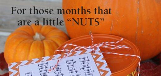 Nuts Visiting Teaching Printable