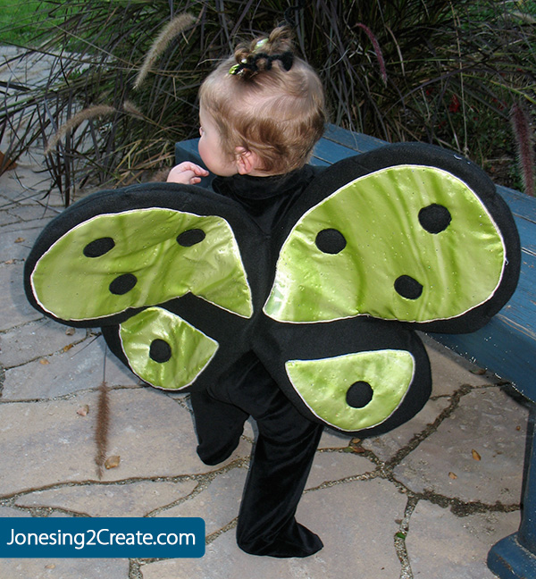 baby butterfly costume