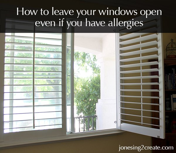 Windows Open If You Have Allergies