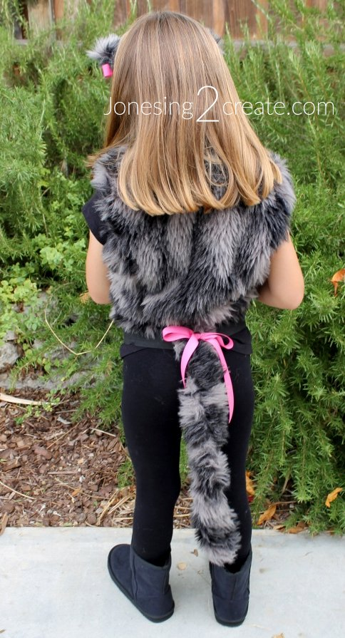 Homemade Cat Costume for Kids - Jonesing2Create