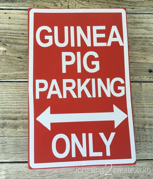 Guinea Pig Parking Sign